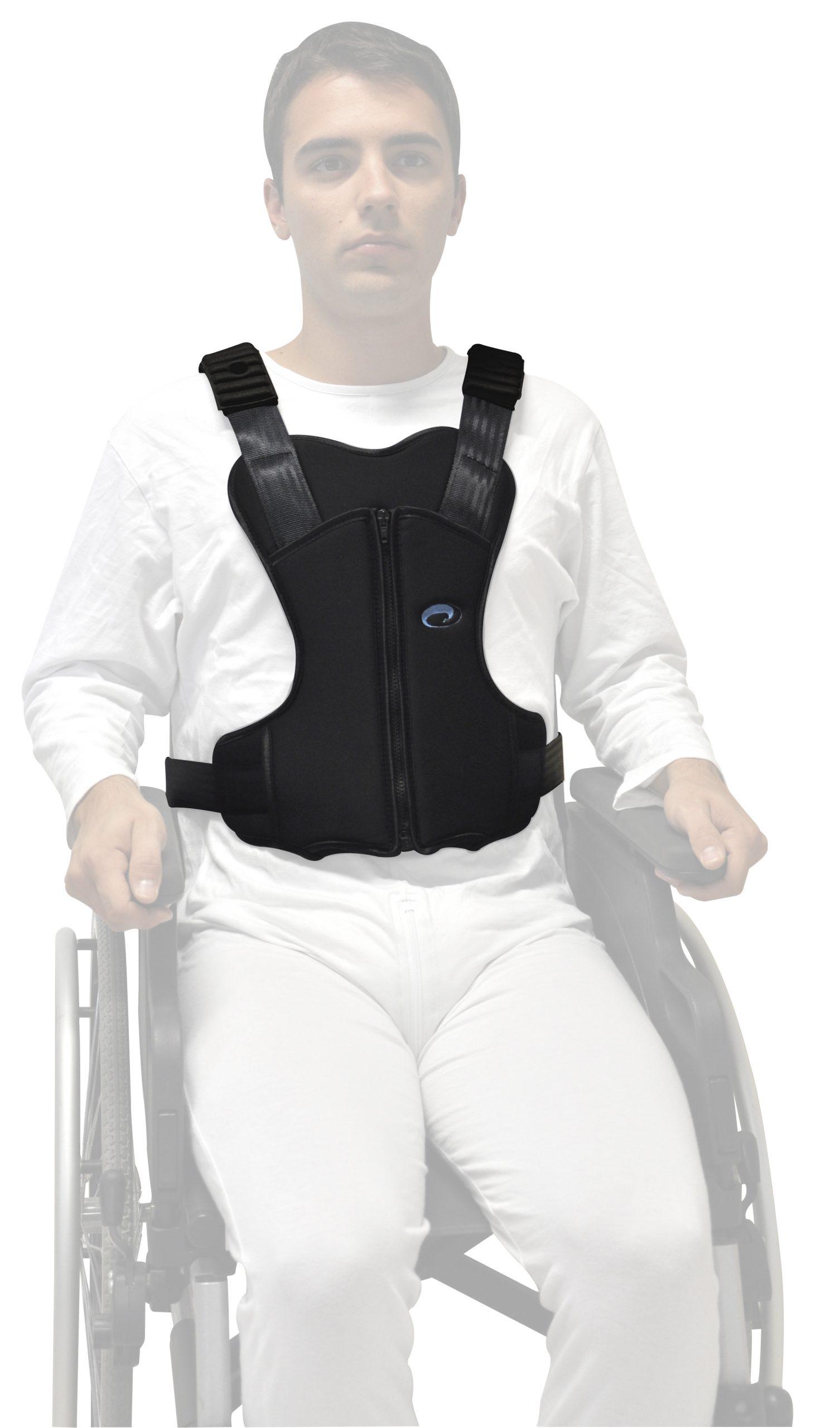 Cinturones para sillas